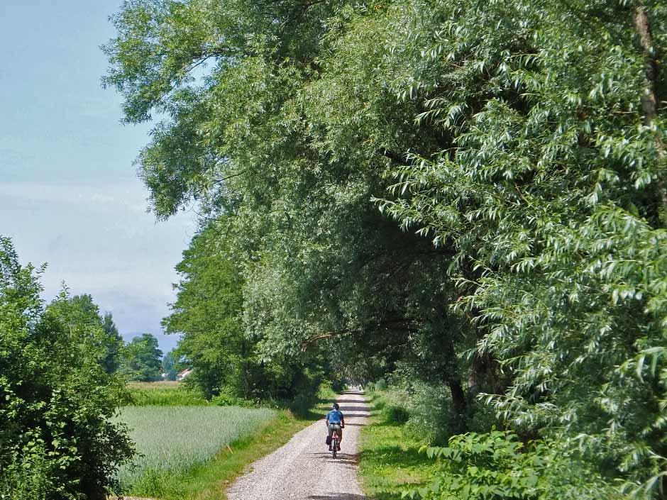 Cycling on the outskirts of Ljubljana