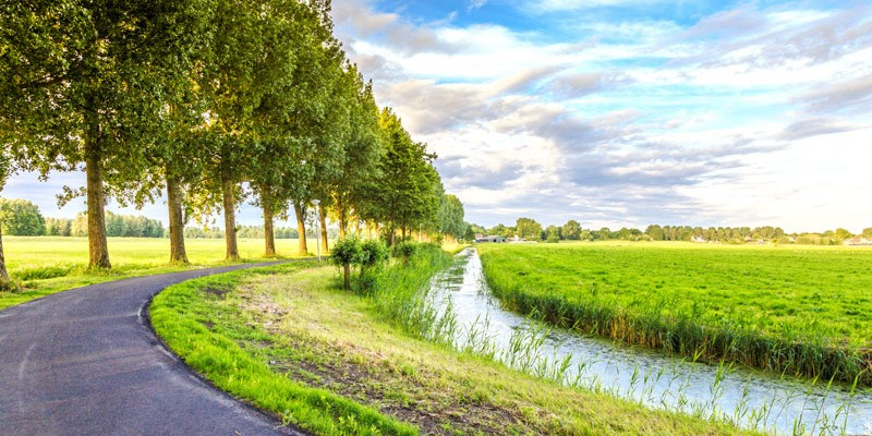 Holland cycle path with polder landscape