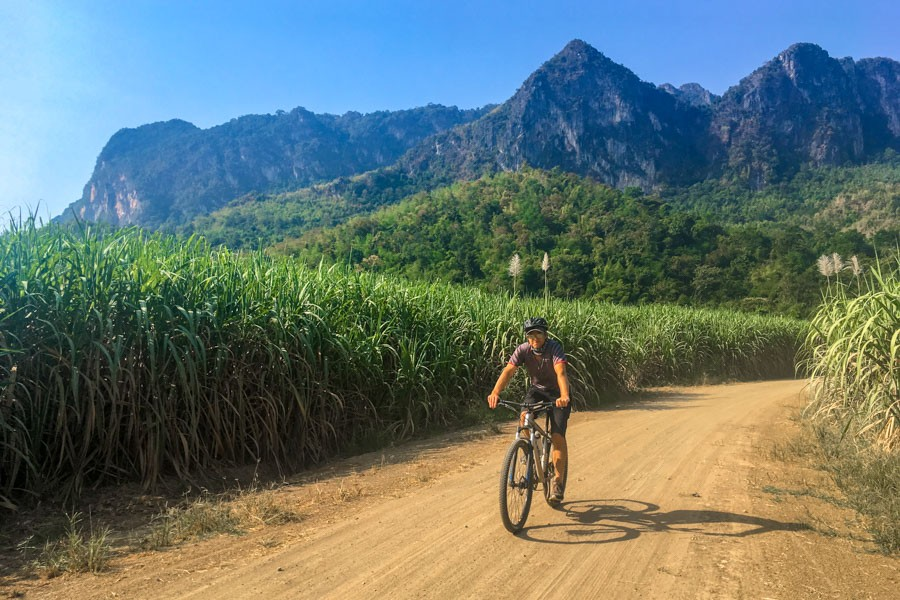 Cycling through the sugar canes