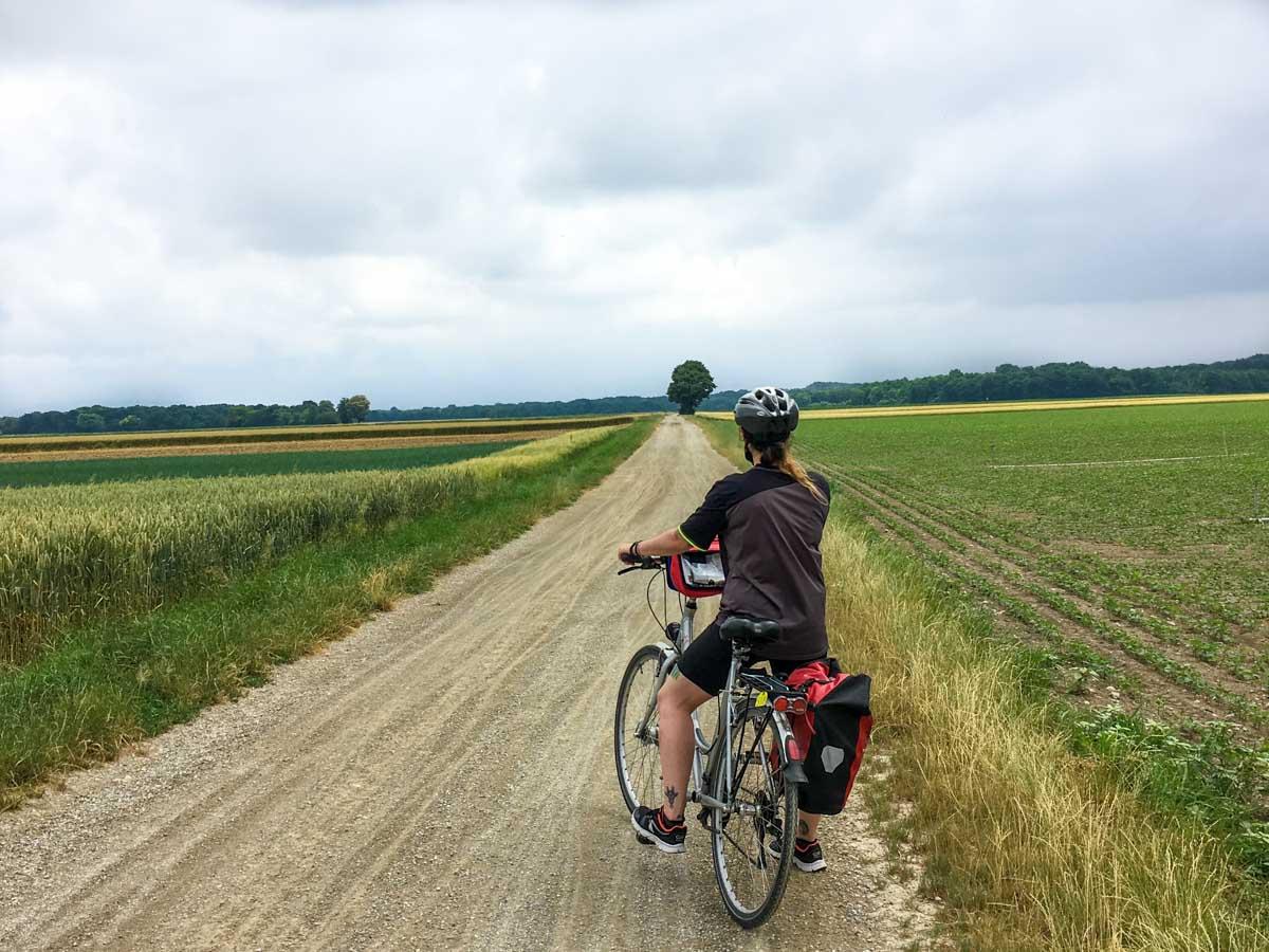 Cycle route - Vienna to Bad Deutsch Altenburg