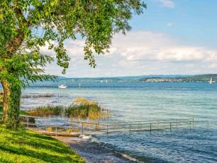 Lake Constance Shore