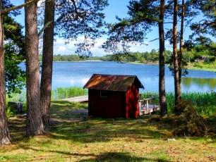 Sweden forest by lake - Sweden photo blog