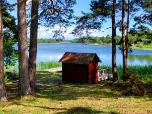 Sweden forest by lake - Sweden photo blog