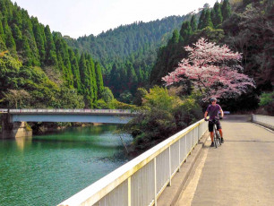 jp002 - Cycling Japan cherry blossoms