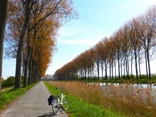 Belgian cycle path with bike